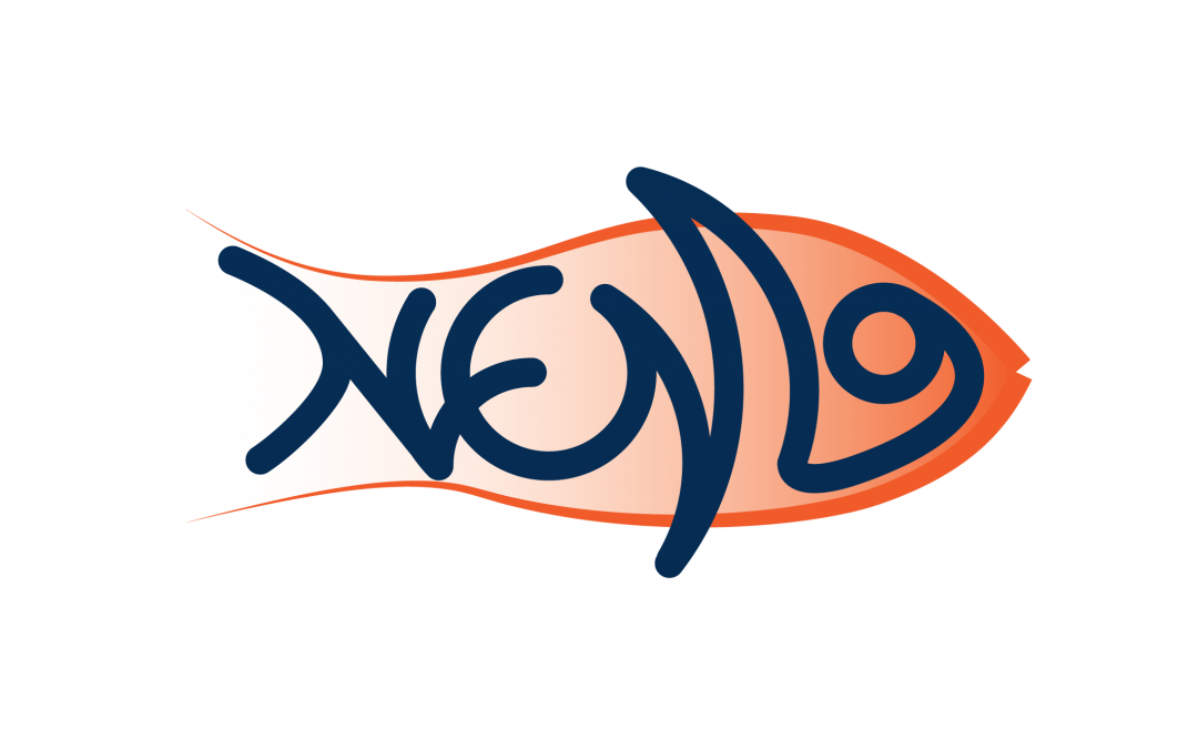 4-year EU H2020 NEMO project secures funding