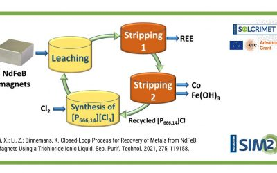 Closed-loop process for Co & REE recovery from NdFeB magnets